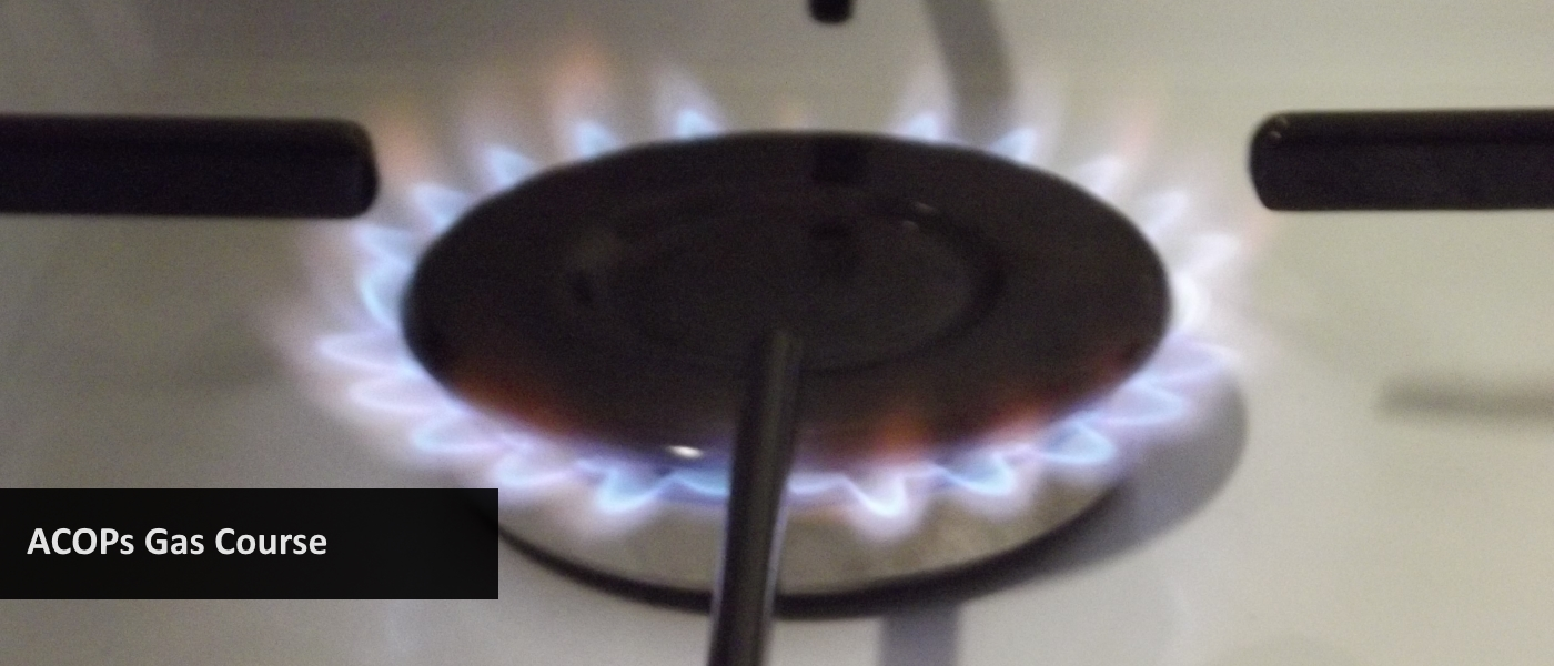 Gas flame on cooker hotplate