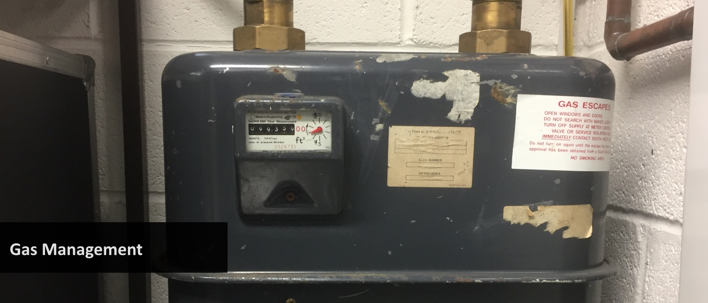 Industrial gas meter